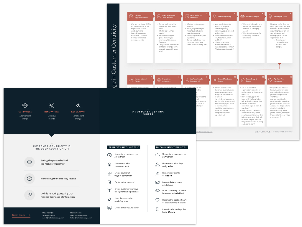 Customer Centricity Model Preview.001